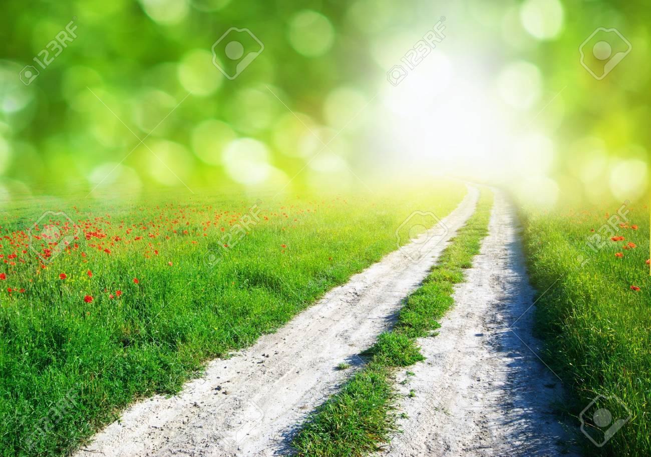 21763079-草原と青空のレーン。自然のデザイン。